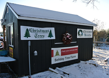 Soliday Tree Farm